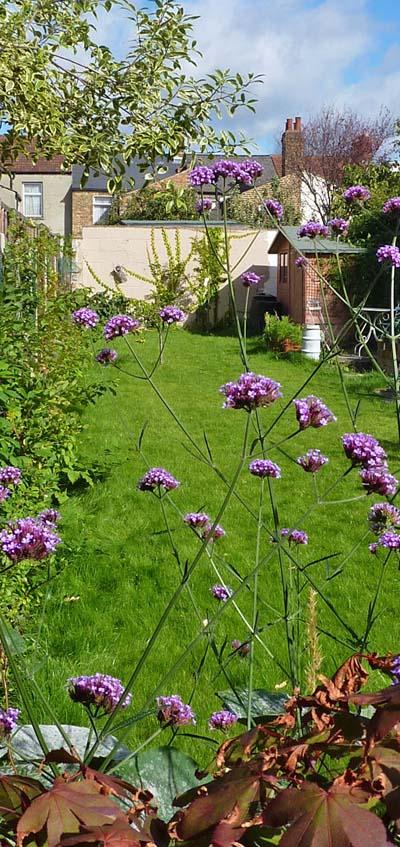 Turpin >> Mark Cummings Garden Design, Consultancy, Renovation and Care